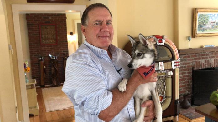 Bill Belichick holding his dog Nike